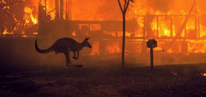 Πυρκαγιές στην Αυστραλία